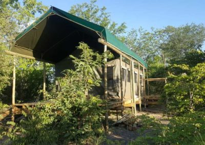 Luxury Tents on wooden decks in a wilderness area of Chobe Forest