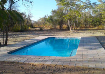 chobe forest camp pool